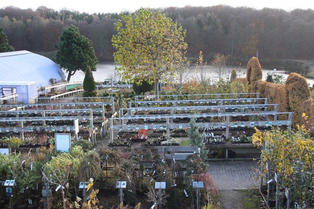 Flemmings Planteskole